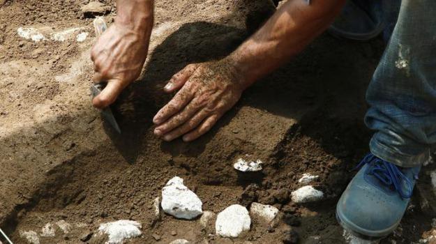 archeologia, san lorenzo bellizzi, Cosenza, Calabria, Cultura