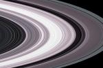 Gli anelli di Saturno sono più giovani dei dinosauri (fonte: Nasa/Jpl)