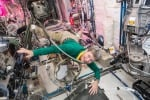 AstroPeggy come la principessa Leia per la Nasa: un'astronauta eccezionale con il record di permanenza nello spazio (fonte: NASA)