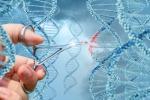 Una mutazione genetica conferisce il 'superpotere' di non sviluppare il fegato grasso