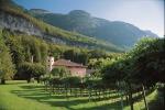Vino: tra i vigneti Alto Adige a bordo di una 4X4 d'epoca
