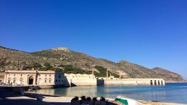 favignana, tonnara favignana, tonno, Edy Bandiera, Sicilia, Economia