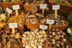 Autunno d'oro per funghi e tartufi e in Calabria volano i consumi