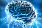 Un'interpretazione artistica del cervello umano (fonte: Allan Ajifo)