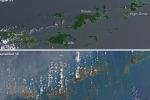 Le isole Vergini prima e dopo il passaggio di Irma (fonte: mages by Joshua Stevens/Nasa)