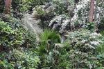Arte dei giardini al Parco dei Ligustri
