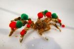 Il granchio Camposcia retusa, con le decorazioni natalizie scelte per studiarne il comportamento (fonte: University of Delaware)