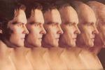Potrebbe avere un ruolo anche nell'uomo l'enzima della longevità Pol III (fonte:MbiyimohGhogomu, WikimediaCommons)