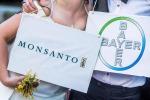 Usa: Monsanto, risarcimento 289 mln dlr a malato di cancro