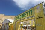 Agricoltura:Moncalvo (Coldiretti), al Sud corsa alla terra