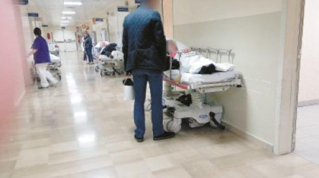 catanzaro, ospedale, pronto soccorso, rissa, Catanzaro, Calabria, Archivio