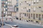 Topi e scarafaggi all'ospedale di Catanzaro, la denuncia del sindacato