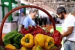 Messina, dal Comune via libera ai mercati biologici di Piazza Casa Pia e Piazza F. Lo Sardo