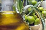 Nasce oleoteca regionale ligure per promuovere olio extravergine