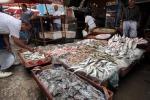 Da ministri Med ok a piano decennale piccola pesca