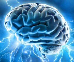 Neonati e bambini usano entrambi gli emisferi del cervello, gli adulti solo uno