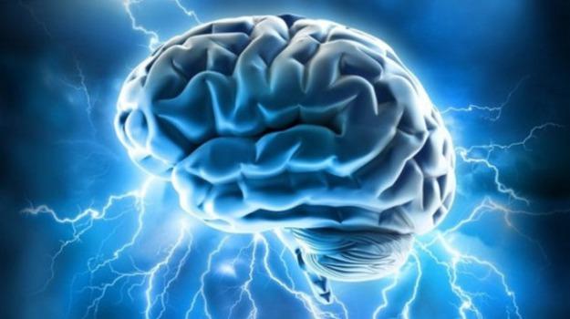 cervello, sonno, Scienza Tecnica