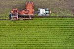 In Italia il 15% superficie coltivata e' a biologico
