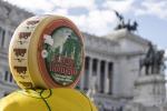 Latte: Federdistribuzione, +30% vendite pecorino romano