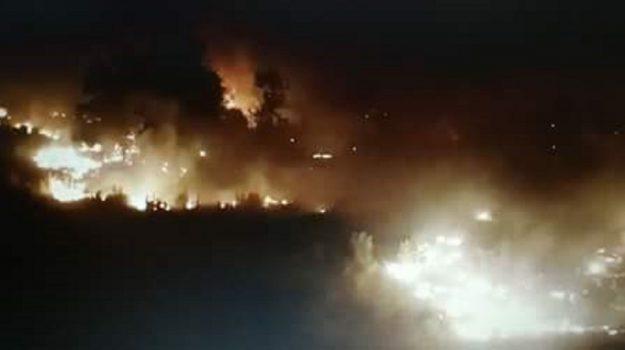 incendi nel cosentino, Calabria, Cronaca