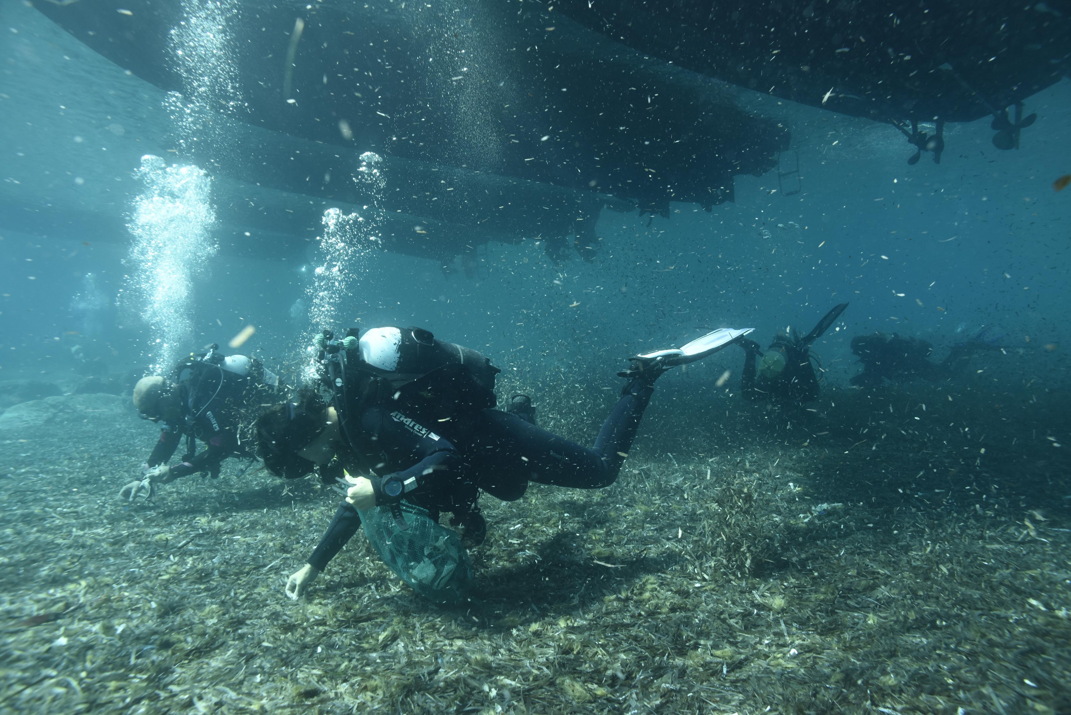 Acque dello Stretto di Messina inquinate, è contaminato il 37 per cento dei  pesci - Gazzetta del Sud