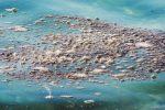 Scarichi fognari nel mare di Letojanni, la Cassazione conferma due condanne