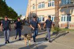 Primo giorno di scuola, a Catanzaro in campo anche la polizia