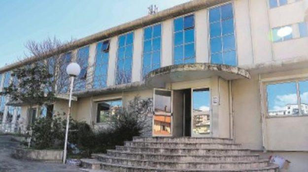 provincia di vibo, Catanzaro, Calabria, Politica