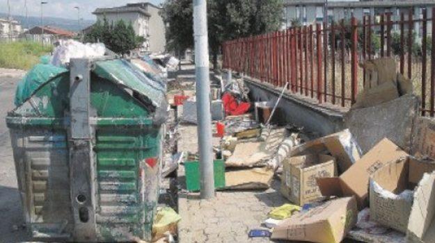 nettezza urbana, rifiuti vibo valentia, Elio Costa, Catanzaro, Calabria, Politica