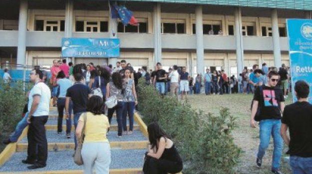 miur, università magna graecia, Catanzaro, Calabria, Politica