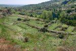 Ambientalisti a Squillace scoprono parte del Vivarium, monastero del sesto secolo