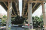 Cadono calcinacci dal viadotto Furci: il Cas avvierà subito la messa in sicurezza