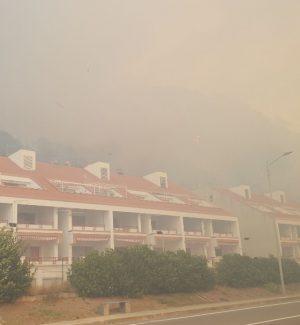 Vasto incendio a Guardia Piemontese, le fiamme lambiscono il centro