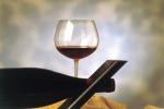 In Usa i vini italiani più conosciuti dopo i californiani