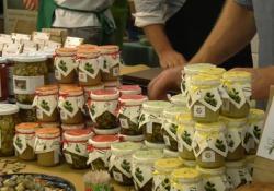 I nuovi legumi presidio Slow Food presenti al Salone del Gusto di Torino