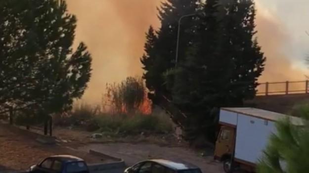 carabinieri, incendi, regione calabria, Mario Oliverio, Catanzaro, Calabria, Cronaca