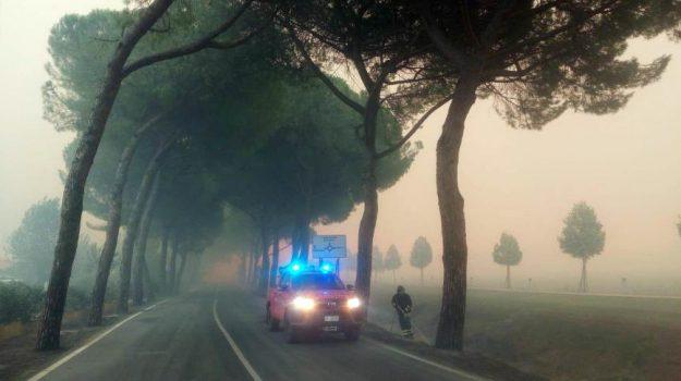 INCENDIO IN TOSCANA, Enrico Rossi, Sicilia, Cronaca