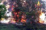 Incendio in via Trapani a Catanzaro, allarme tra gli abitanti della zona