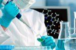 L'alleata silenziosa dei tumori è una proteina che li aiuta a nutrirsi: la scoperta italiana