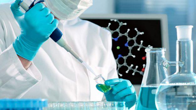 Biochimica et Biophysica Acta - Molecular Basis of Disease, Mical2, Debora Angeloni, proteina, tumori, Salute e Benessere