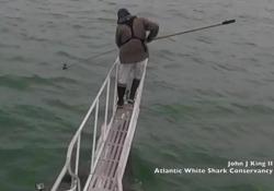Al largo delle coste del Massachusetts
