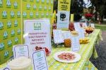 Fuorilegge il 20% del cibo straniero sulle tavole italiane