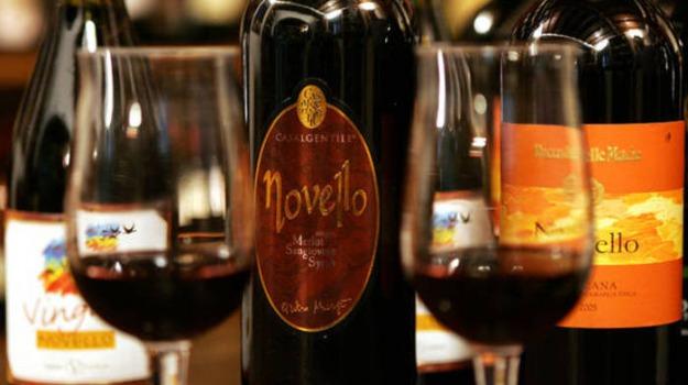 miglio vino novello, Novè, vino, vino calabrese, vino novello, XII Salone del vino novello, Cosenza, Calabria, Economia