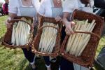 Aumenta il consumo di asparago nelle case degli italiani