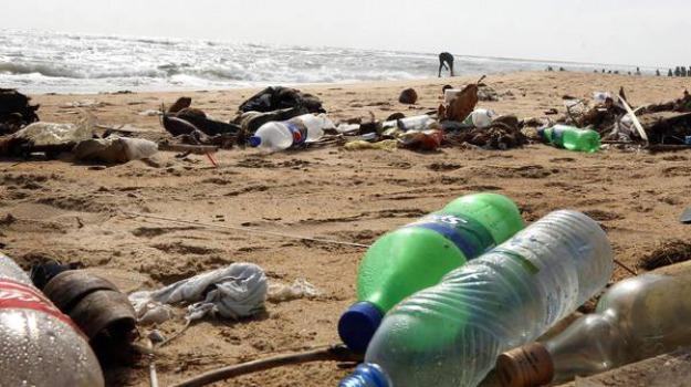 amministrazione comunale Rende, plastic free Rende, Cosenza, Calabria, Cronaca