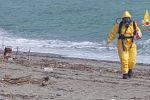 Fusto sospetto sul litorale di Borgia, le analisi: non è radioattivo