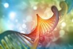 Diabete, messo a punto l'atlante genetico della malattia