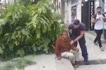 Forte scirocco a Palermo, albero cade e colpisce un passante: il video