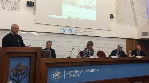 Klaus Algieri, Cosenza, Calabria, Economia