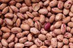 Produzione in calo, sempre più legumi stranieri in Sicilia